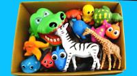介绍海洋馆海龟玩具