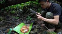 丛林生存技能,寻找野生蘑菇烤着吃,味道好极了!