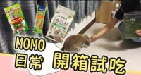 兔兔平常都吃些什么-MOMO日常