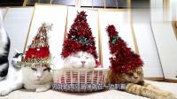 猫咪被主人打扮成这样,这是要过圣诞节了吗?这下连圣诞树都省下不用买了!
