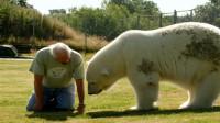 大爷饲养了一只北极熊,从此无人敢欺负,走向人生巅峰!