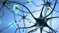 29、神经网络之BP算法_实战预测案例