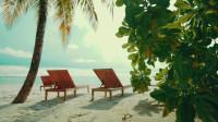 马尔代夫-蜜月旅行的天堂-热带婚礼A步行通过马尔代夫