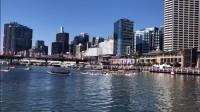 澳洲旅居Vlog:逛充满年味的唐人街,去达令港看异国的赛龙舟