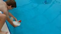 鸡会游泳吗?老外将公鸡扔进水里实验,鸡:此刻慌得一批!