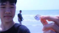 几兄弟来到银滩赶海玩,抓到了一条嘴巴透明的小鱼仔,是什么鱼?