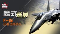 """F-35要完犊子了?那么被防长""""护犊子""""的F-15战机还要飞多久"""