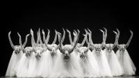 中央民族大学舞蹈学院15名顶尖舞者,演绎了一支让人回味的蒙古舞
