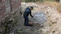 农村小伙挖个鱼池养鱼,家里淘气田园犬做了什么让小伙气坏啦