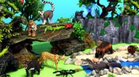 认识大森林里的小动物们猴子猎豹