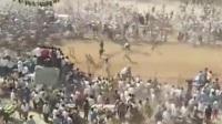 印度村庄斗牛赛时公牛冲入人群