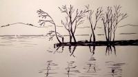 风景画倒影的树窦老师教画画