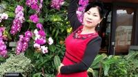 琼花舞魅:热闹非凡的香港海洋公园:美丽的香港音乐版