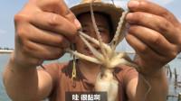 今天地笼大丰收 大章鱼 螃蟹 一笼一斤多 尽在笼中