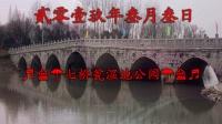 贰零壹玖年叁月叁日游七桥瓮湿地公园
