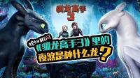 《驯龙高手3》里的夜煞是种什么龙?
