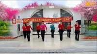 阳光美梅原创广场舞【你是我永远的痛】动感32步-团队版-编舞:美梅