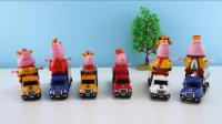 合金汽车玩具大集合,快来和小猪佩奇一起玩吧!