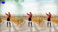 好心情蓝蓝广场舞原创【118】步子舞【一不小心把你爱正背面】附教学