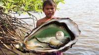 小伙独自一人在海边打野,捡到几个贝壳,就地烧烤起来