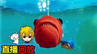 【XY小源】直播回放 20190313海底大猎杀 灯笼鱼 下次自己再录一次