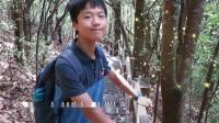森林历险记