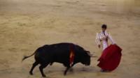 戏弄大黑牛的斗牛士, 敏捷的身法连续躲过攻击,漂亮镜头值得一看