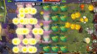 猴子玩具儿童小游戏育儿视频:植物大战僵尸2,歌手向日葵炫酷产阳光,黄金包菜也美丽!
