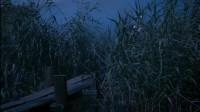 在那偏远的村庄,神秘的祭祀仪式,失踪死后的少女身体