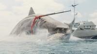 这部让杰森斯坦森下海的电影,中美票房双爆炸,能鲨背后有鲨弄