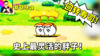 ★猫咪大战争★回转寿司猫真的很完美!速度如此快的肉盾太难得了!★09a