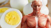 每天吃一个鸡蛋对身体到底是好是坏?听听专家怎么说