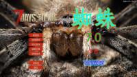 飞的蜘蛛-A17.2MOD蜘蛛V7.0-1
