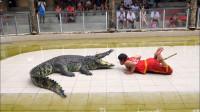男子将头伸进鳄鱼嘴里,下一秒让人出乎意料,镜头拍下全过程!