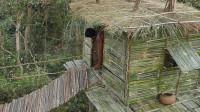 生存哥 原始技能 建造最多的竹树屋