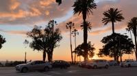 LA vlog2 - California Adventure