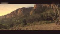 狼孩与象王为复仇大战恶虎 最新冒险的动作片。
