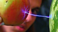 老外给西瓜通240V交流电,用苹果测试后现象太神奇!什么原理?