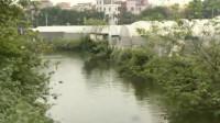 女孩凌晨乘出租车遇害:司机抢手机并将其推下河