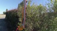 园林修剪树木,有了这机器,一个人干是个人的活!