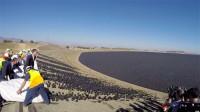为了减少水蒸发,美国向水库投入9600万遮阳球,管用吗?