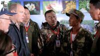 中国野生东北虎种群活动范围扩大见证中摩友谊