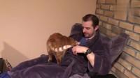 冬天窝在家,猫奴只想做一件事儿了