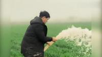 农民歌手大衣哥,看他在家里下地干活的样子,实实在在的农民
