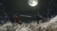 只狼剧情攻略流程解说第二期龙胤之血的力量