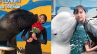 美女不做空姐当饲养员 白鲸海狮一言不合就强吻
