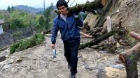 农村小伙在外打工20年,回家帮爸妈干农活,上100斤的树扛得起吗