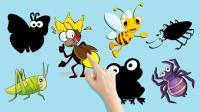 认识萤火虫等小昆虫动物