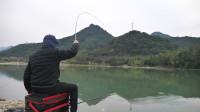这一竿下去,钓上来的鱼把钓鱼人乐坏了