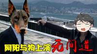 看门狗:阿阳戏精附体,与狗上演无间道大戏,结果却双双被关押!